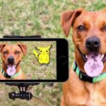 Why Do You Need a Dog Camera - Fair Review - Post Thumbnail